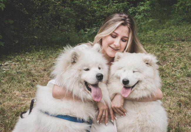 Pes je človekov najboljši prijatelj, njegov zdrav nasmeh tudi