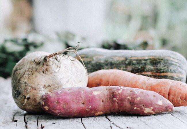 Ste naveličani klasičnega pire krompirja, naredite ga drugače